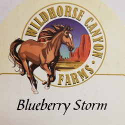 Wildhorse Canyon Farms Blueberry Storm